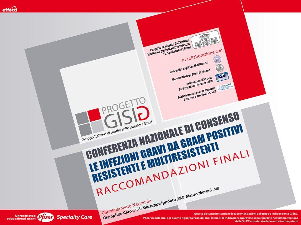 POLMONITI NOSOCOMIALI Coordinamento Generale: Istituto Nazionale Malattie Infettive Lazzaro Spallanzani IRCCS, Roma Gruppo di Esperti: M.