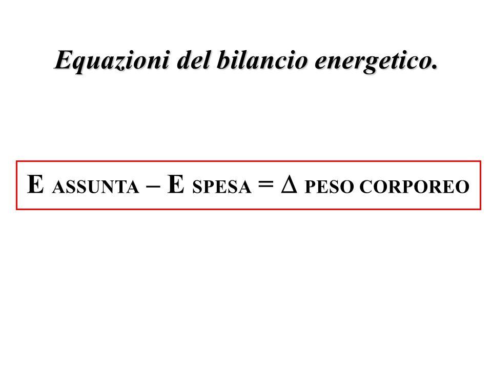 E ASSUNTA – E SPESA = PESO CORPOREO Equazioni del bilancio energetico.
