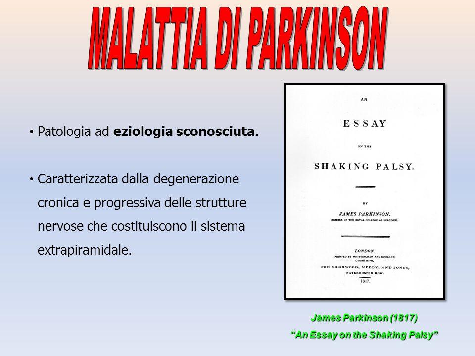 Patologia ad eziologia sconosciuta. Caratterizzata dalla degenerazione cronica e progressiva delle strutture nervose che costituiscono il sistema extr