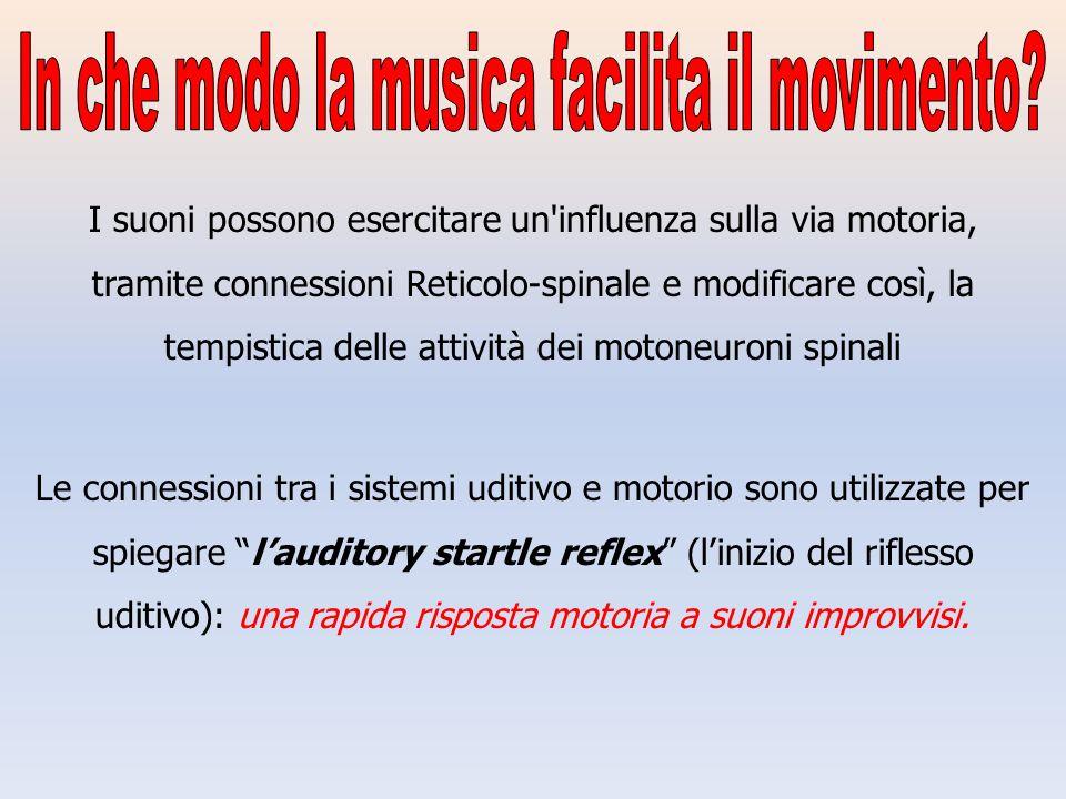 I suoni possono esercitare un'influenza sulla via motoria, tramite connessioni Reticolo-spinale e modificare così, la tempistica delle attività dei mo