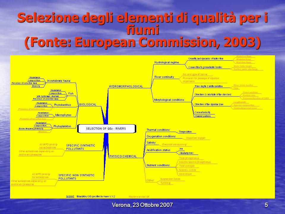 Verona, 23 Ottobre 20075 Selezione degli elementi di qualità per i fiumi (Fonte: European Commission, 2003)