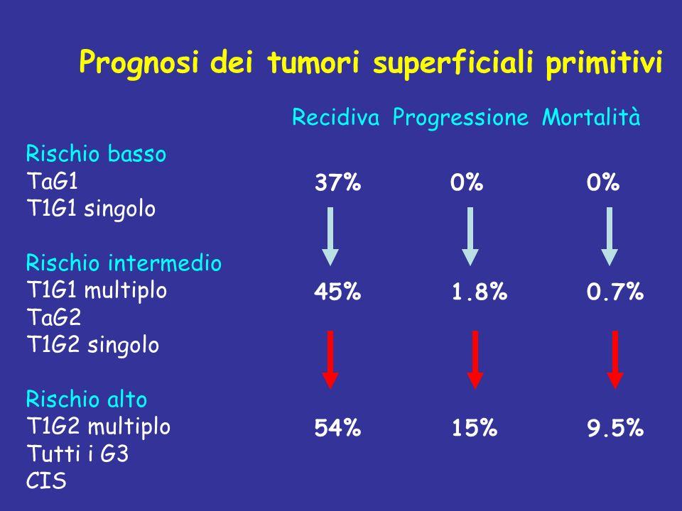 Rischio basso TaG1 T1G1 singolo Rischio intermedio T1G1 multiplo TaG2 T1G2 singolo Rischio alto T1G2 multiplo Tutti i G3 CIS Recidiva Progressione Mortalità 37%0%0% 45%1.8%0.7% 54%15%9.5% Prognosi dei tumori superficiali primitivi
