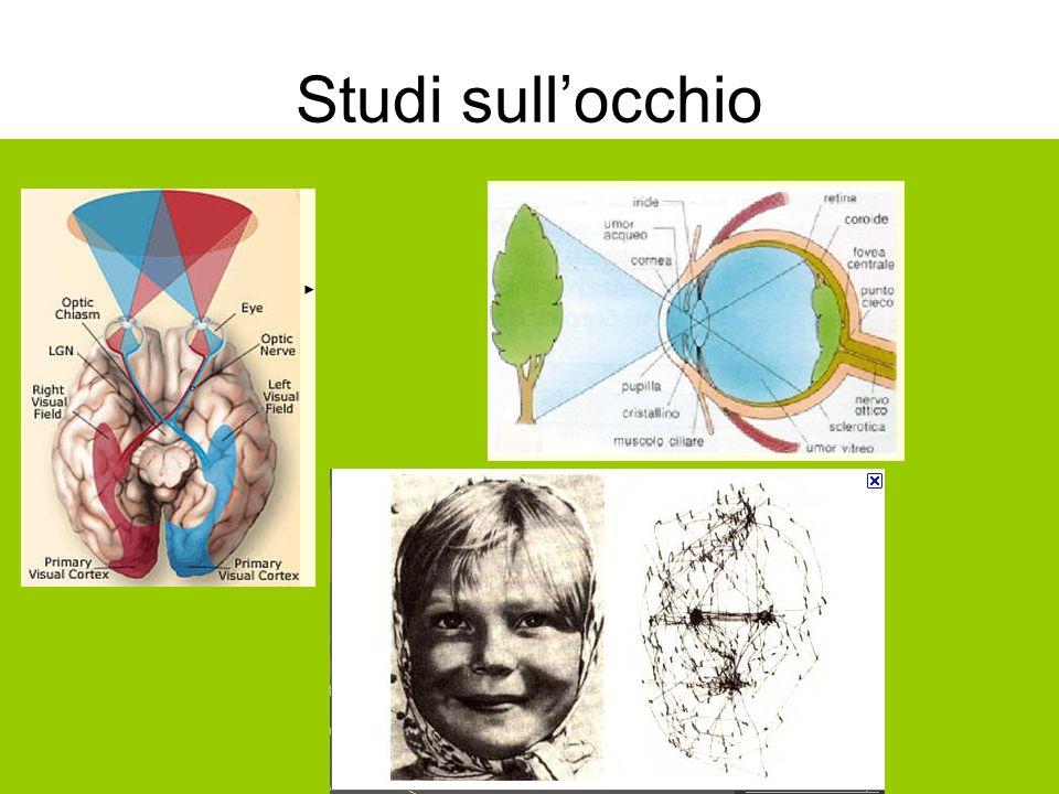 Studi sullocchio