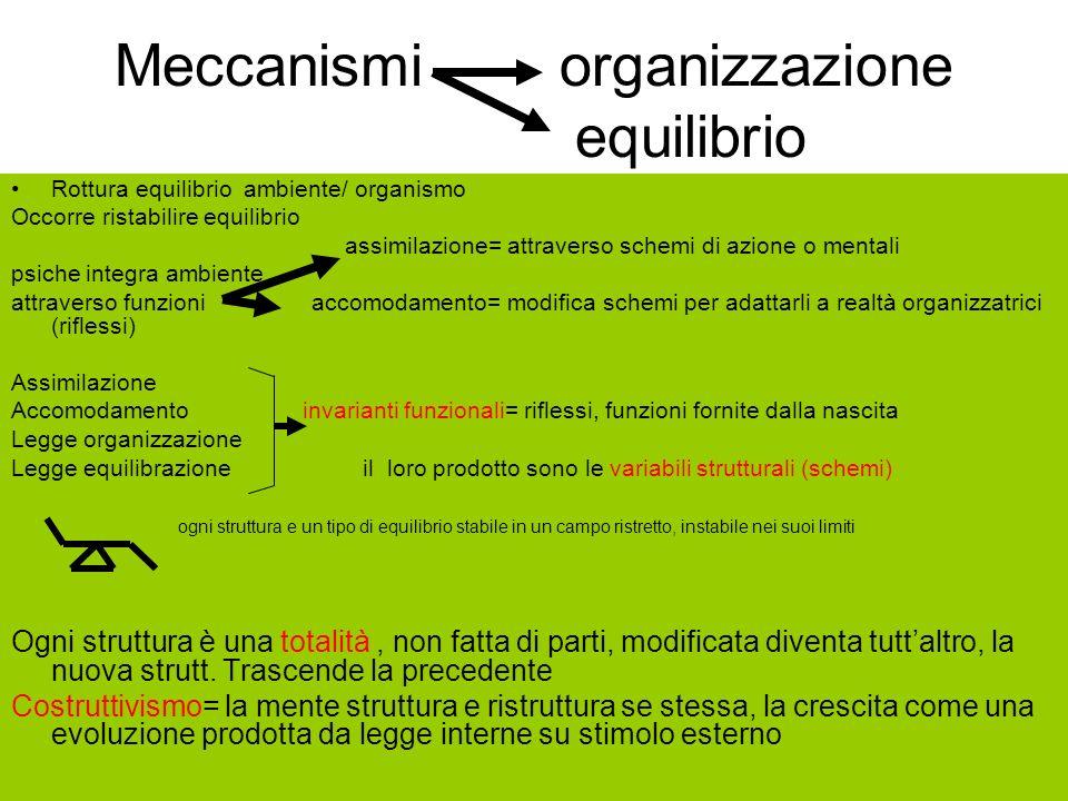 Meccanismi organizzazione equilibrio Rottura equilibrio ambiente/ organismo Occorre ristabilire equilibrio assimilazione= attraverso schemi di azione