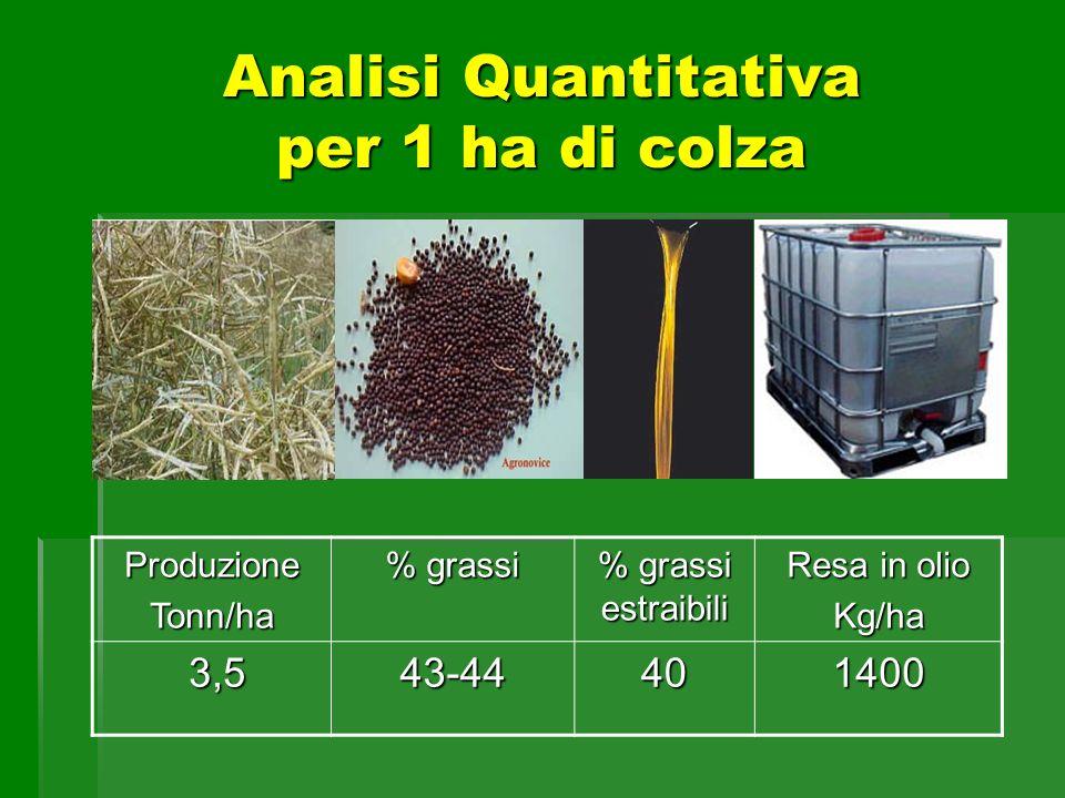 Analisi Quantitativa per 1 ha di colza ProduzioneTonn/ha % grassi % grassi estraibili Resa in olio Kg/ha 3,5 3,543-44401400
