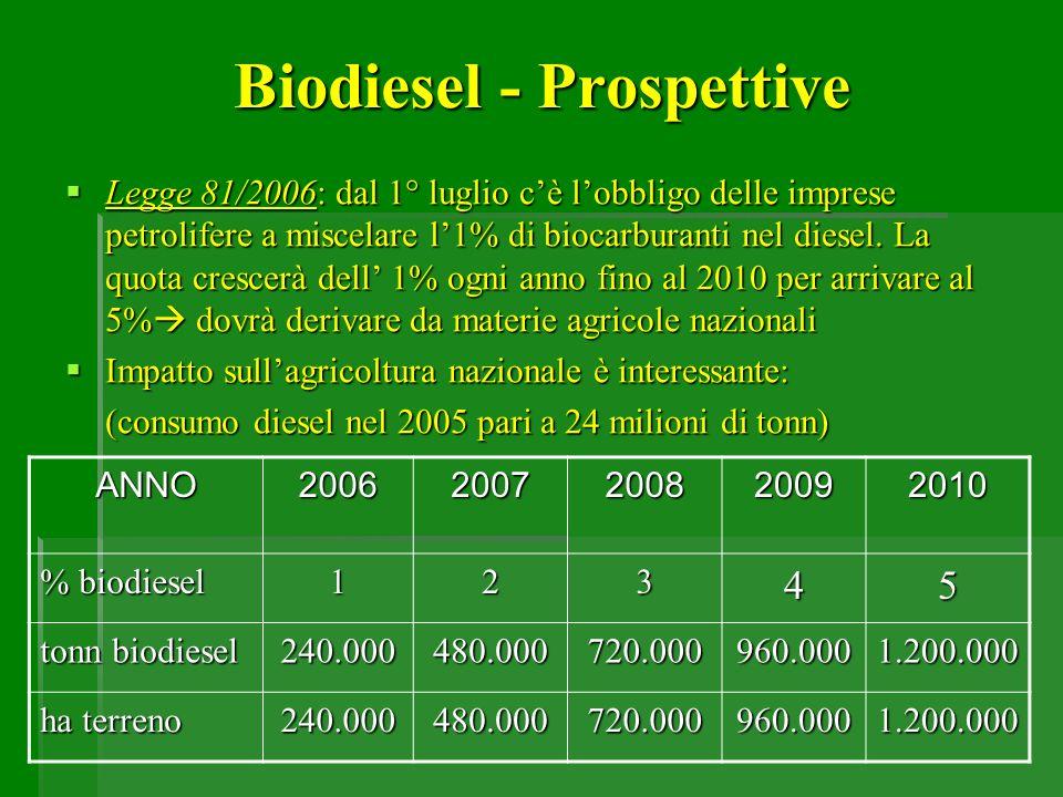 Biodiesel - Prospettive Legge 81/2006: dal 1° luglio cè lobbligo delle imprese petrolifere a miscelare l1% di biocarburanti nel diesel. La quota cresc