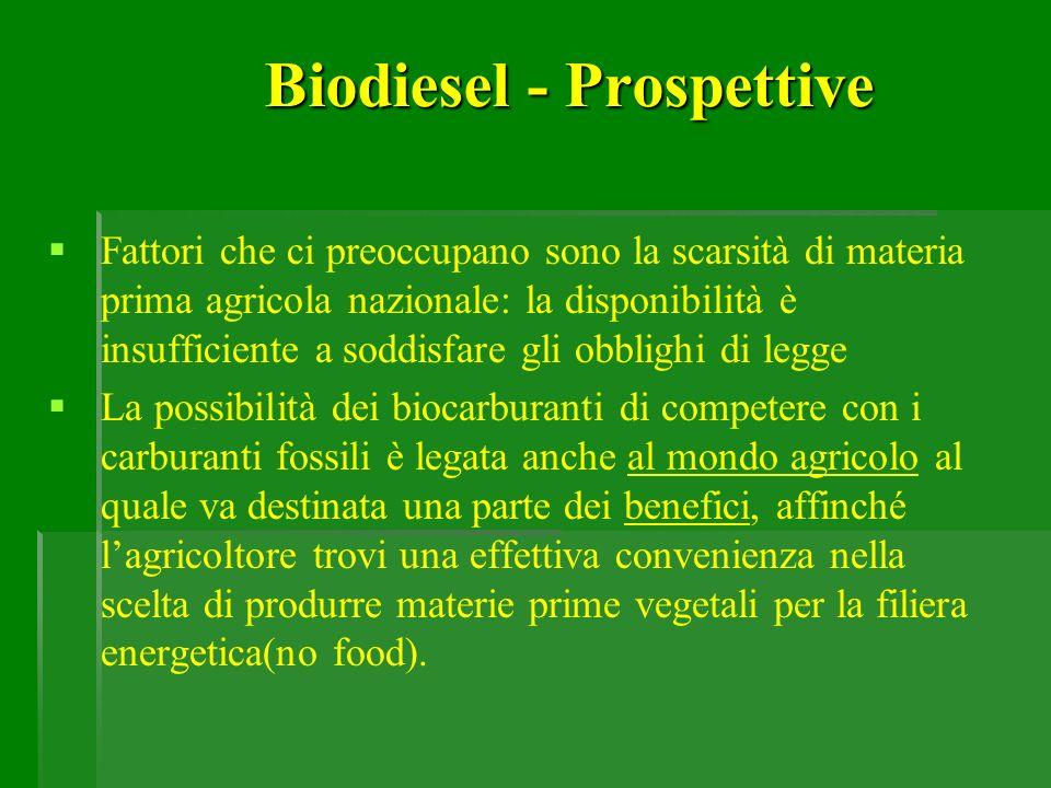 Biodiesel - Prospettive Fattori che ci preoccupano sono la scarsità di materia prima agricola nazionale: la disponibilità è insufficiente a soddisfare