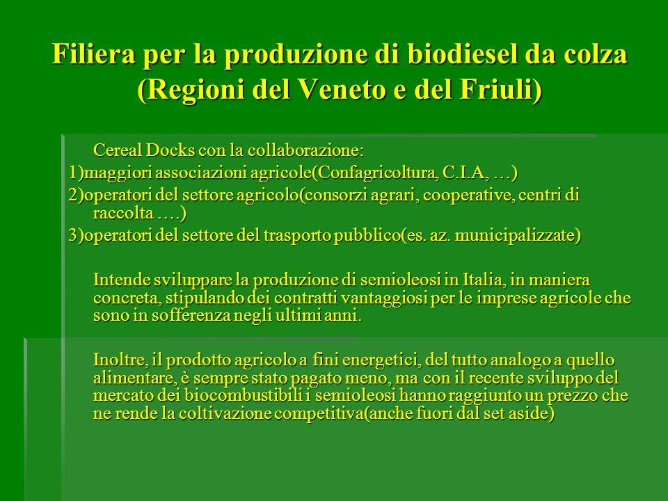 Filiera per la produzione di biodiesel da colza (Regioni del Veneto e del Friuli) Cereal Docks con la collaborazione: 1)maggiori associazioni agricole