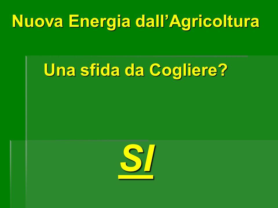 Nuova Energia dallAgricoltura Una sfida da Cogliere? SI