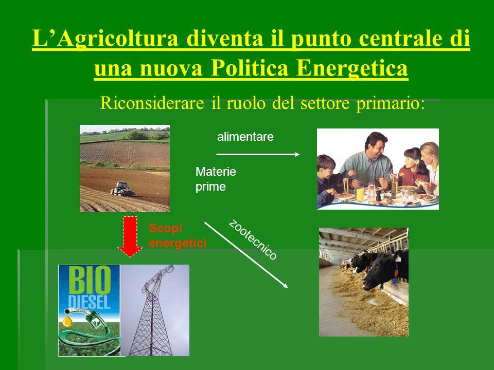 LAgricoltura diventa il punto centrale di una nuova Politica Energetica Riconsiderare il ruolo del settore primario: Materie prime zootecnico alimenta
