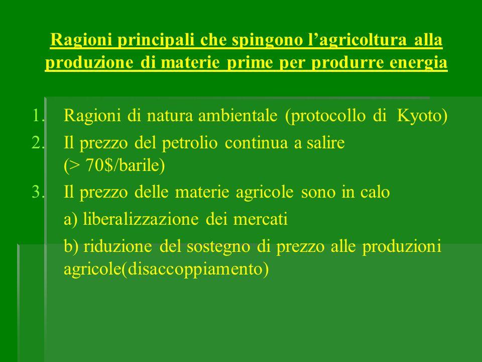 Ragioni principali che spingono lagricoltura alla produzione di materie prime per produrre energia 1. 1.Ragioni di natura ambientale (protocollo di Ky