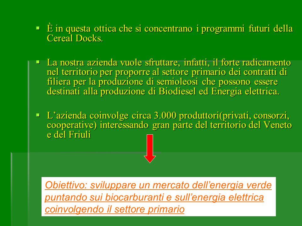 Filiera per la produzione di biodiesel da colza (Regioni del Veneto e del Friuli) Cereal Docks con la collaborazione: 1)maggiori associazioni agricole(Confagricoltura, C.I.A, …) 2)operatori del settore agricolo(consorzi agrari, cooperative, centri di raccolta ….) 3)operatori del settore del trasporto pubblico(es.