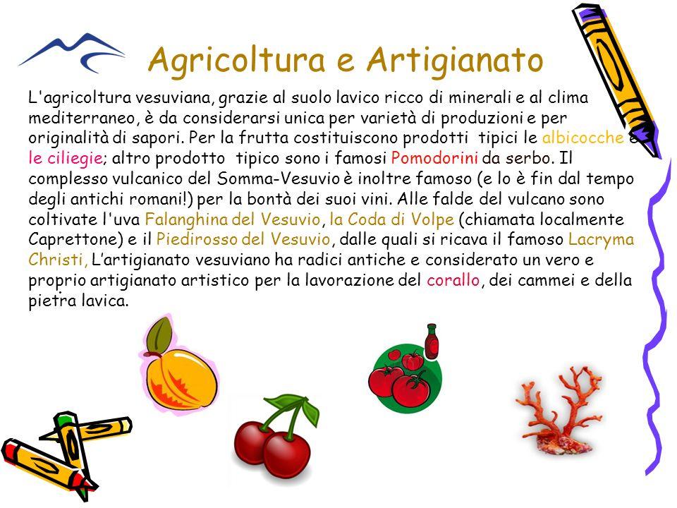 Agricoltura e Artigianato. L'agricoltura vesuviana, grazie al suolo lavico ricco di minerali e al clima mediterraneo, è da considerarsi unica per vari