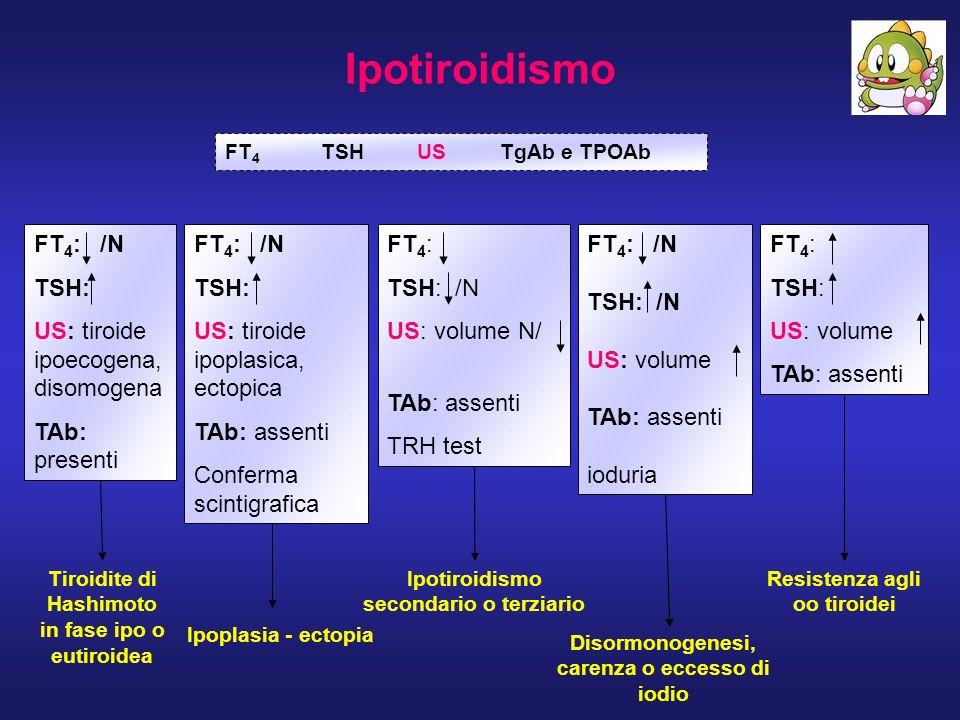 Ipotiroidismo FT 4 TSHUS TgAb e TPOAb FT 4 : /N TSH: US: tiroide ipoecogena, disomogena TAb: presenti FT 4 : TSH: /N US: volume N/ TAb: assenti TRH te