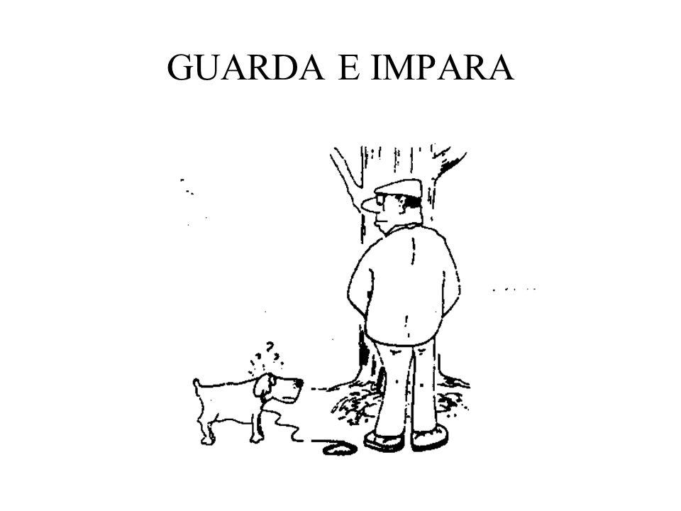 GUARDA E IMPARA