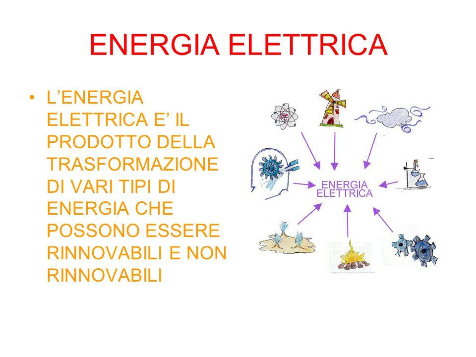 LENERGIA PRODOTTA DAL SOLE, MEDIANTE LA FOTOSINTESI CLOROFILLIANA, SI TRASFORMA IN ENERGIA CHIMICA.