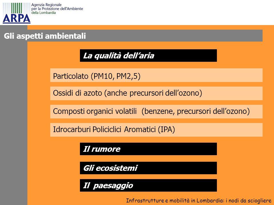 La qualità dellaria Particolato (PM10, PM2,5) Infrastrutture e mobilità in Lombardia: i nodi da sciogliere Ossidi di azoto (anche precursori dellozono) Composti organici volatili (benzene, precursori dellozono) Idrocarburi Policiclici Aromatici (IPA) Il rumore Gli ecosistemi Il paesaggio