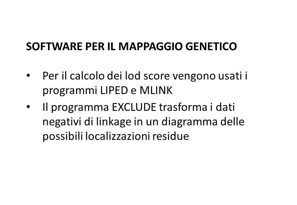 SOFTWARE PER IL MAPPAGGIO GENETICO Per il calcolo dei lod score vengono usati i programmi LIPED e MLINK Il programma EXCLUDE trasforma i dati negativi
