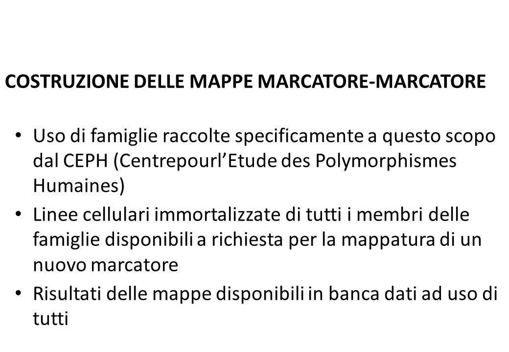 COSTRUZIONE DELLE MAPPE MARCATORE-MARCATORE Uso di famiglie raccolte specificamente a questo scopo dal CEPH (CentrepourlEtude des Polymorphismes Humai