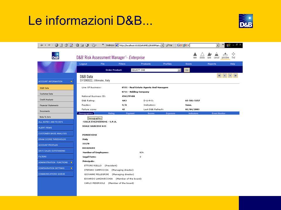 Le informazioni D&B...