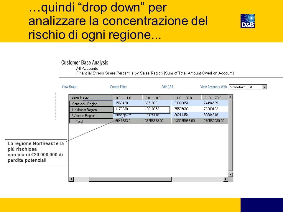…quindi drop down per analizzare la concentrazione del rischio di ogni regione...