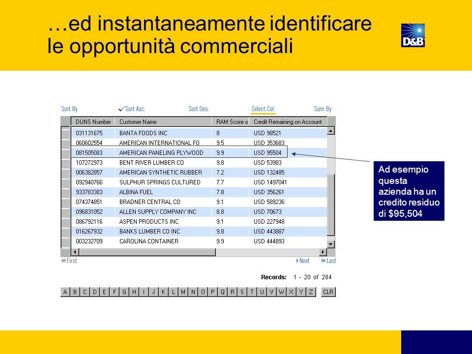 …ed instantaneamente identificare le opportunità commerciali Ad esempio questa azienda ha un credito residuo di $95,504