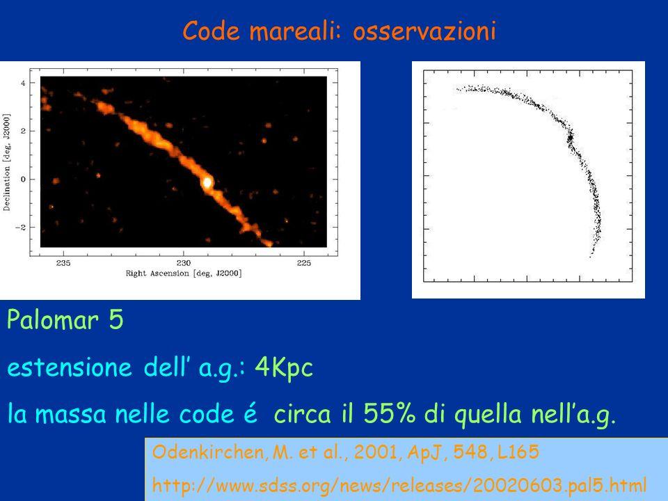 Code mareali: osservazioni Odenkirchen, M. et al., 2001, ApJ, 548, L165 http://www.sdss.org/news/releases/20020603.pal5.html Palomar 5 estensione dell