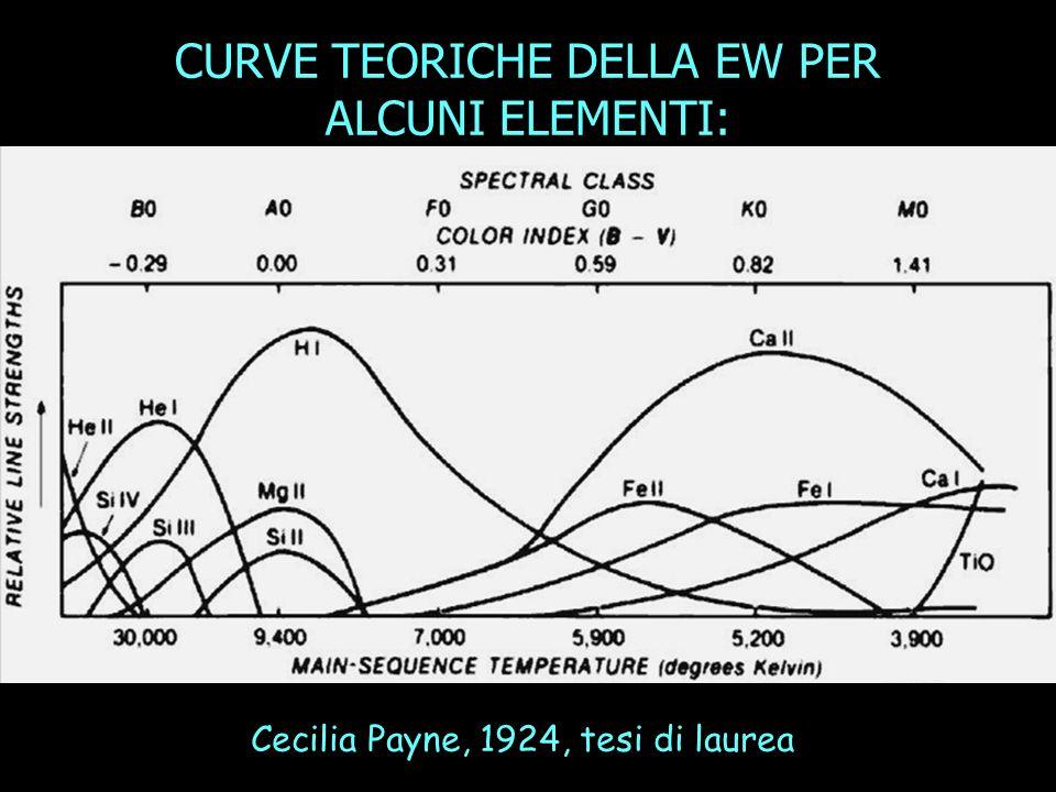 CURVE TEORICHE DELLA EW PER ALCUNI ELEMENTI: Cecilia Payne, 1924, tesi di laurea