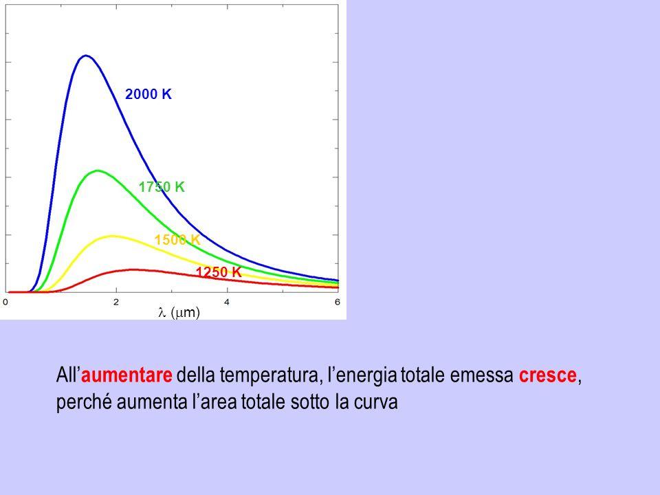 ( m) 2000 K 1750 K 1500 K 1250 K All aumentare della temperatura, lenergia totale emessa cresce, perché aumenta larea totale sotto la curva
