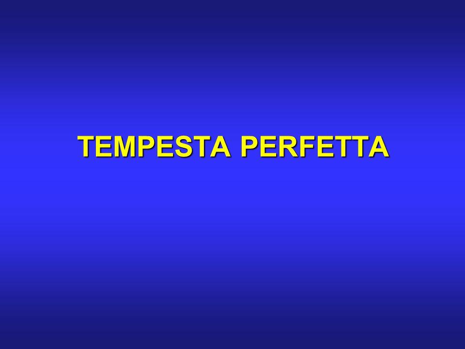 TEMPESTA PERFETTA