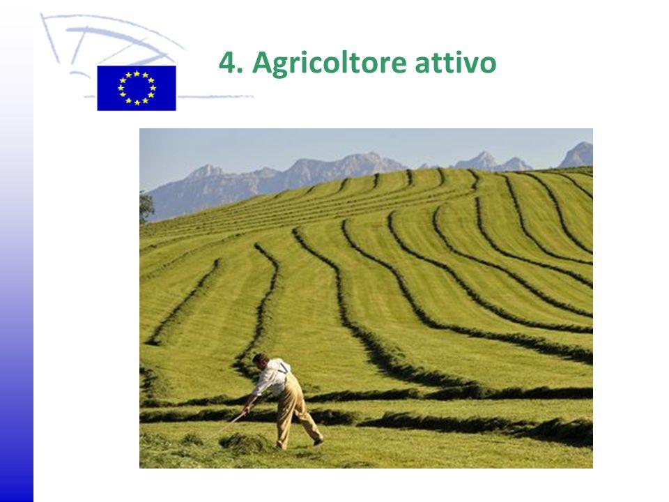 © 2009 Europäisches Parlament, Besucherdienst 4. Agricoltore attivo