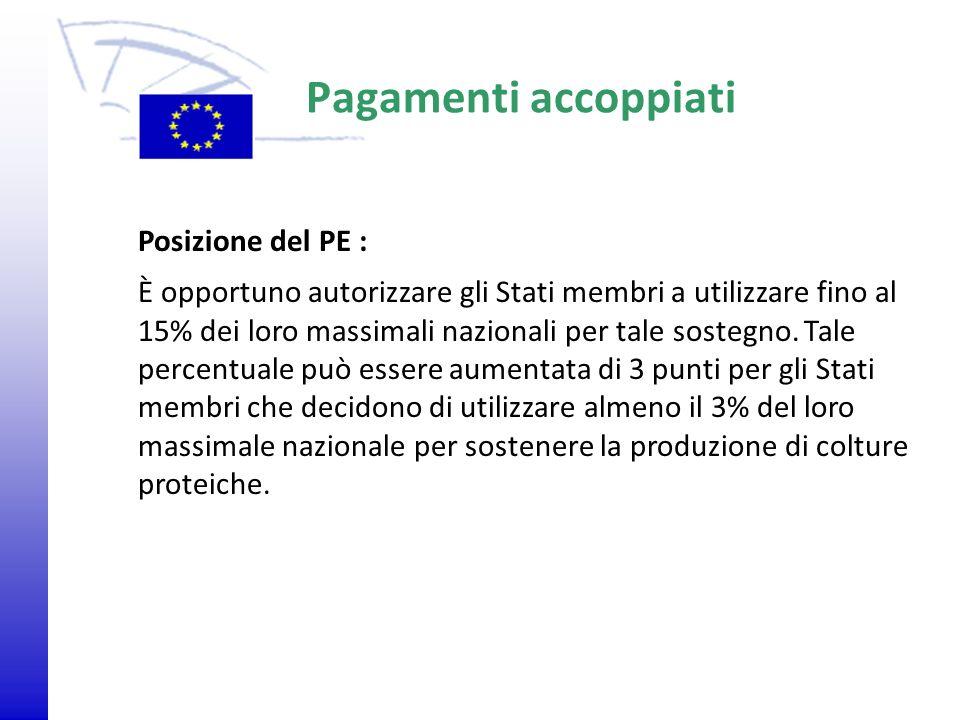 © 2009 Europäisches Parlament, Besucherdienst Pagamenti accoppiati Posizione del PE : È opportuno autorizzare gli Stati membri a utilizzare fino al 15
