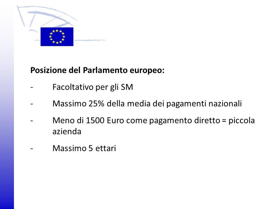 © 2009 Europäisches Parlament, Besucherdienst Posizione del Parlamento europeo: -Facoltativo per gli SM -Massimo 25% della media dei pagamenti naziona