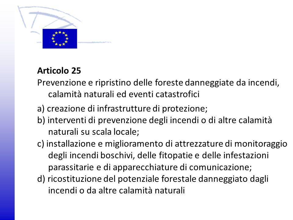 © 2009 Europäisches Parlament, Besucherdienst Articolo 25 Prevenzione e ripristino delle foreste danneggiate da incendi, calamità naturali ed eventi c