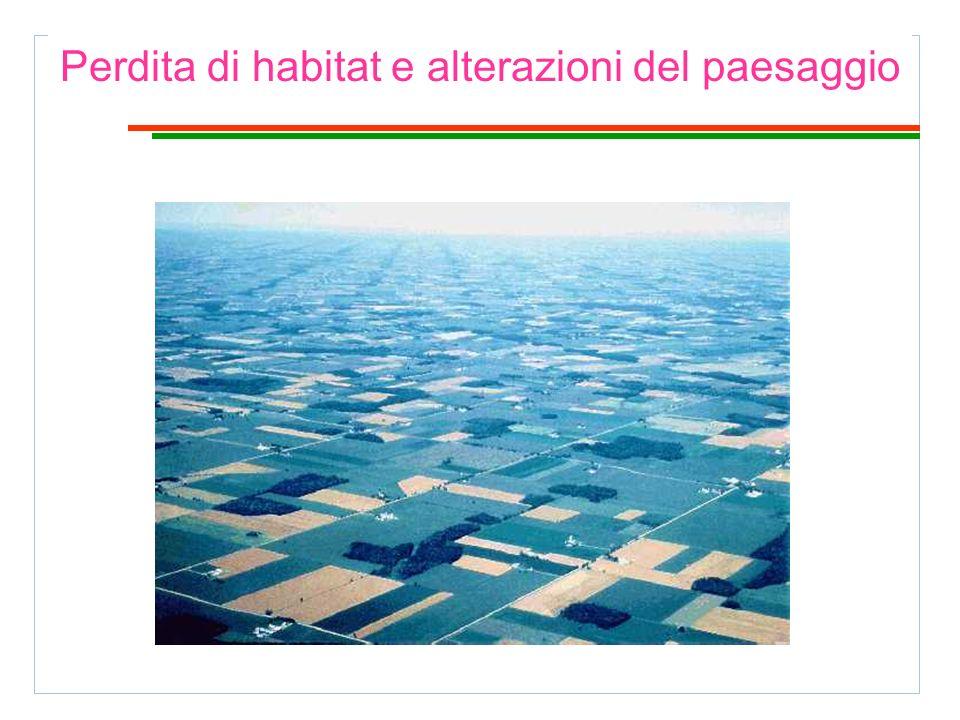 Perdita di habitat e alterazioni del paesaggio