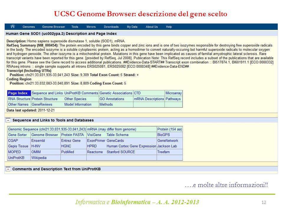 Informatica e Bioinformatica – A. A. 2012-2013 12 UCSC Genome Browser: descrizione del gene scelto ….e molte altre informazioni!!