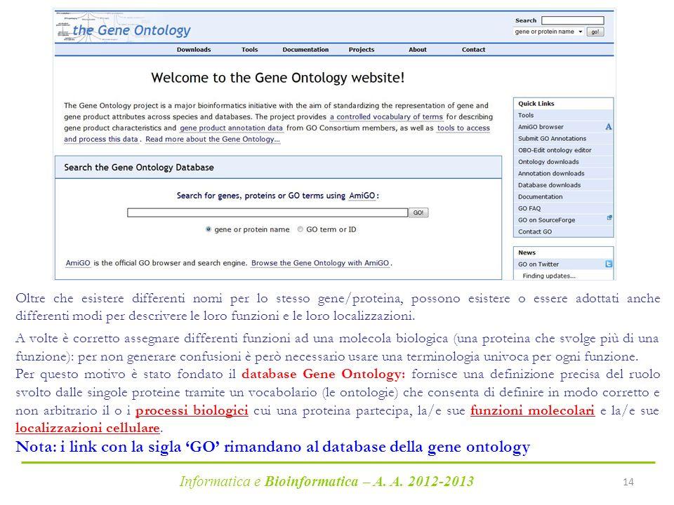 Informatica e Bioinformatica – A. A. 2012-2013 14 http://geneontology.org/ Oltre che esistere differenti nomi per lo stesso gene/proteina, possono esi