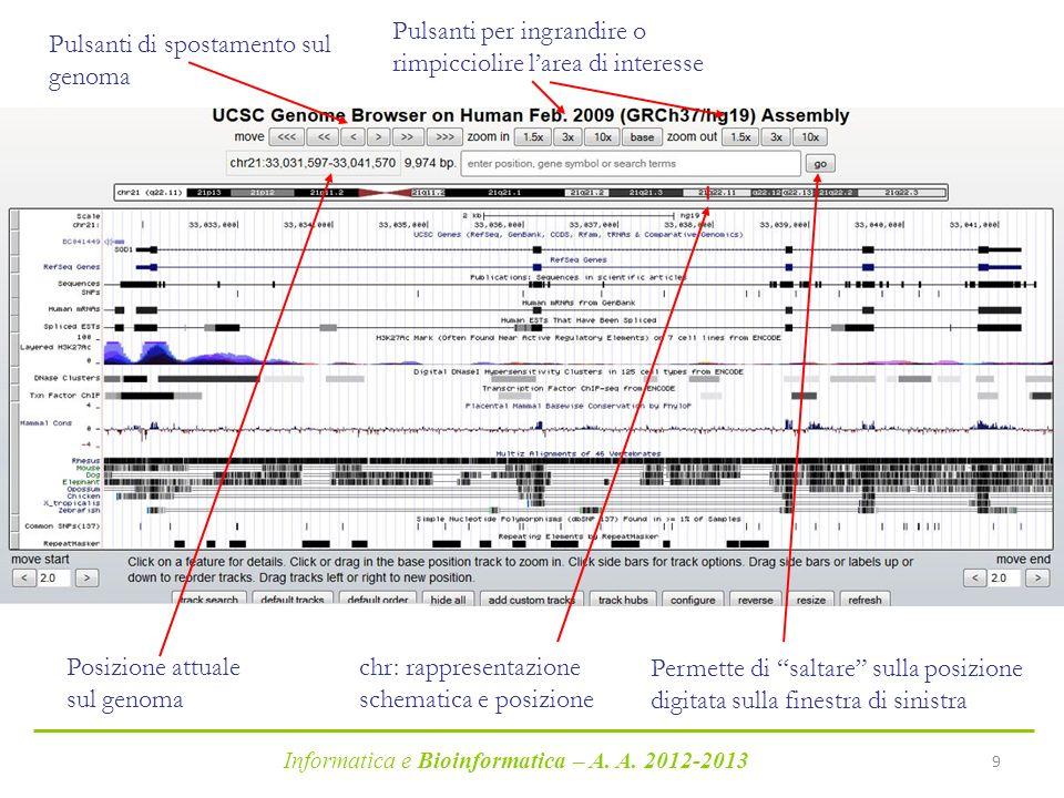 Informatica e Bioinformatica – A. A. 2012-2013 9 Pulsanti di spostamento sul genoma Pulsanti per ingrandire o rimpicciolire larea di interesse Posizio
