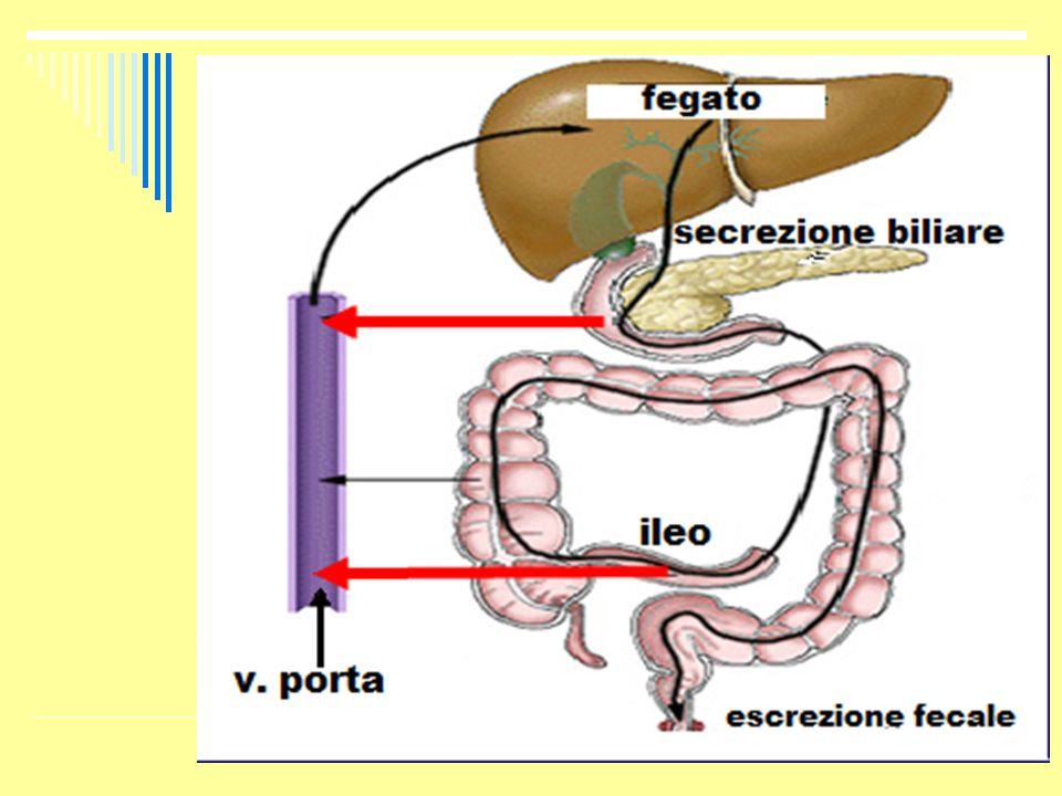Asincronia maturazione endometriale Asincronia maturazione endometriale * * Gerli S, Fertil Steril.