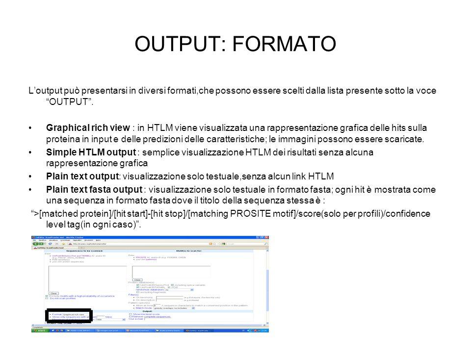 OUTPUT: FORMATO Loutput può presentarsi in diversi formati,che possono essere scelti dalla lista presente sotto la voce OUTPUT. Graphical rich view :