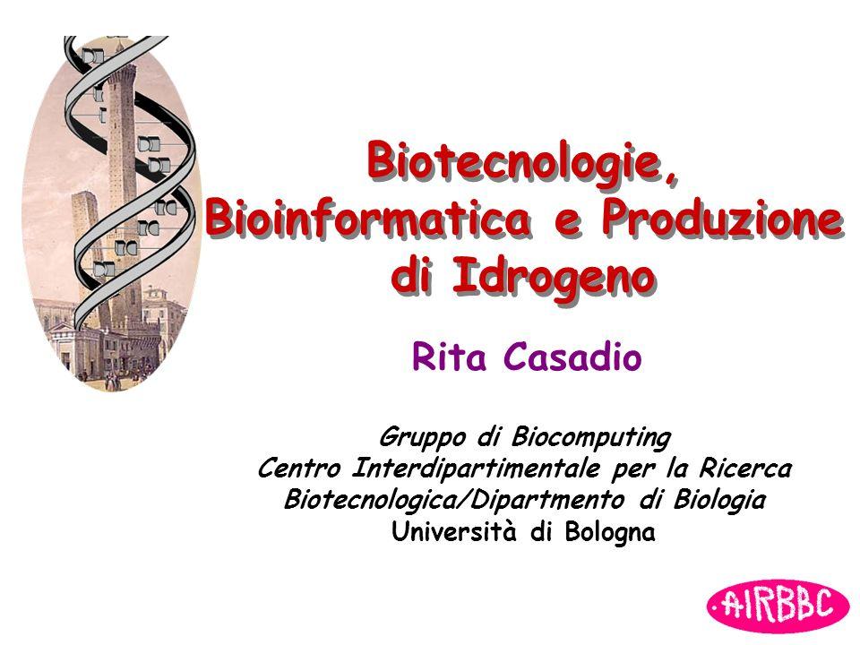 Biotecnologie, Bioinformatica e Produzione di Idrogeno Rita Casadio Gruppo di Biocomputing Centro Interdipartimentale per la Ricerca Biotecnologica/Di