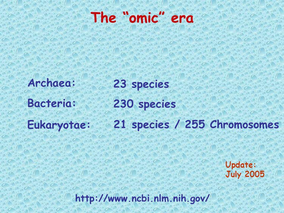 The omic era Update: July 2005 Archaea: Bacteria: 23 species 230 species 21 species / 255 Chromosomes Eukaryotae: http://www.ncbi.nlm.nih.gov/