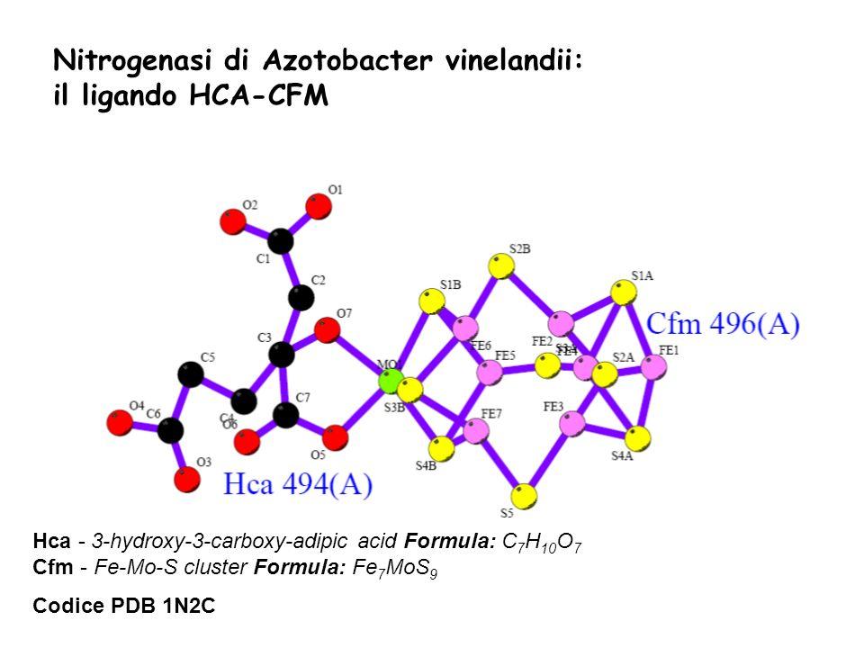 Hca - 3-hydroxy-3-carboxy-adipic acid Formula: C 7 H 10 O 7 Cfm - Fe-Mo-S cluster Formula: Fe 7 MoS 9 Codice PDB 1N2C Nitrogenasi di Azotobacter vinel