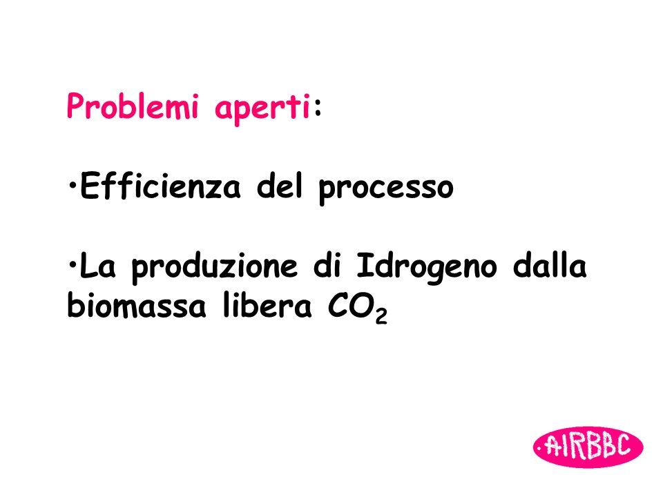 Problemi aperti: Efficienza del processo La produzione di Idrogeno dalla biomassa libera CO 2