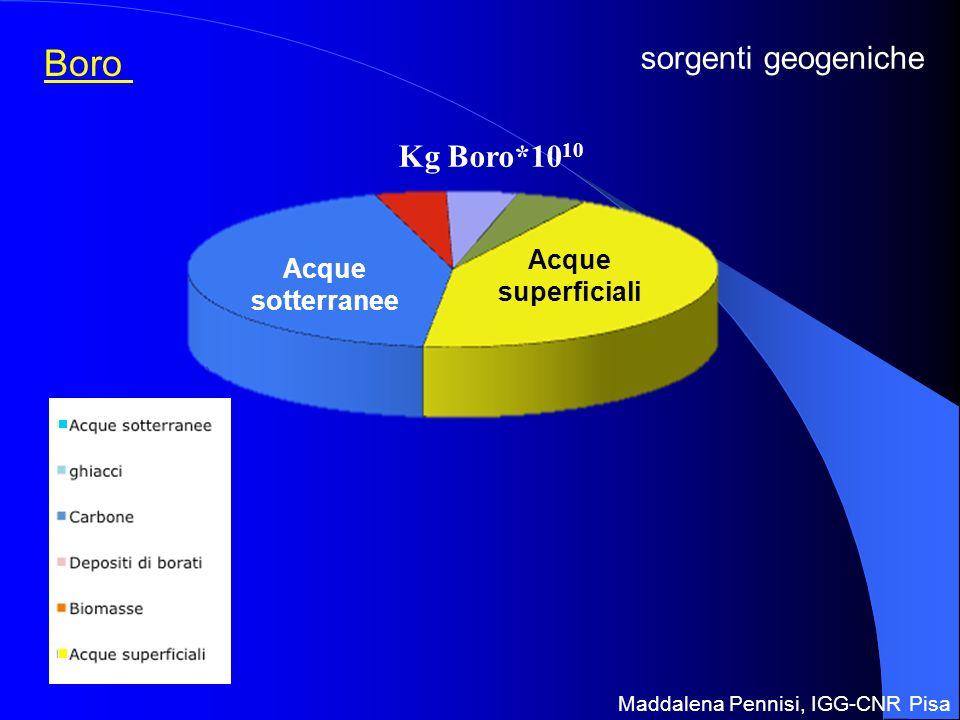 Boro Acque sotterranee Acque superficiali Kg Boro*10 10 sorgenti geogeniche Maddalena Pennisi, IGG-CNR Pisa