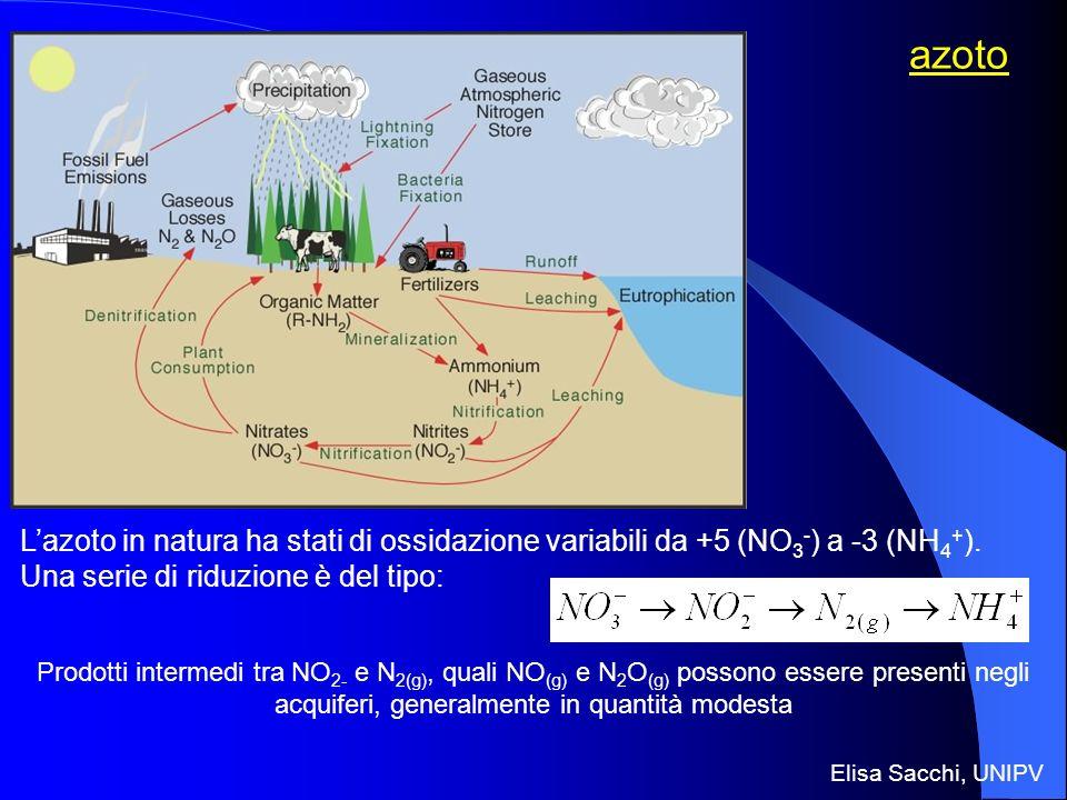 azoto Lazoto in natura ha stati di ossidazione variabili da +5 (NO 3 - ) a -3 (NH 4 + ). Una serie di riduzione è del tipo: Prodotti intermedi tra NO