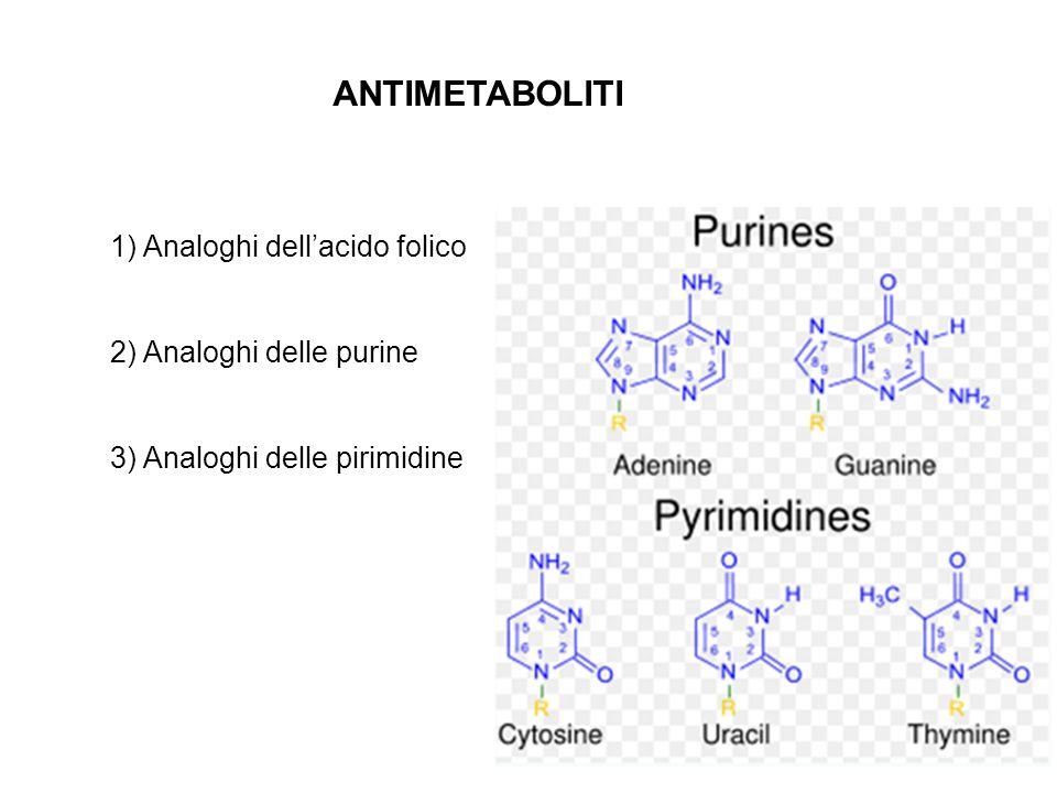 ANTIMETABOLITI 1) Analoghi dellacido folico 2) Analoghi delle purine 3) Analoghi delle pirimidine