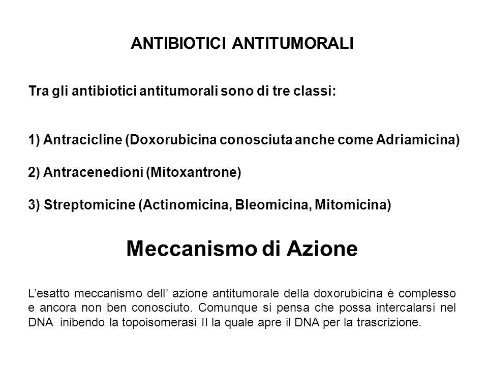 ANTIBIOTICI ANTITUMORALI Tra gli antibiotici antitumorali sono di tre classi: 1) Antracicline (Doxorubicina conosciuta anche come Adriamicina) 2) Antr