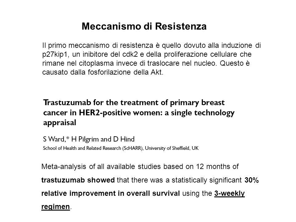 Meccanismo di Resistenza Il primo meccanismo di resistenza è quello dovuto alla induzione di p27kip1, un inibitore del cdk2 e della proliferazione cel