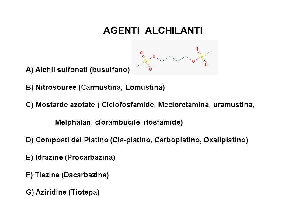 AGENTI ALCHILANTI A) Alchil sulfonati (busulfano) B) Nitrosouree (Carmustina, Lomustina) C) Mostarde azotate ( Ciclofosfamide, Mecloretamina, uramusti